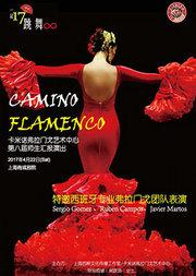 卡米诺弗拉门戈艺术中心第八届师生汇报演出(特邀西班牙著名舞团)