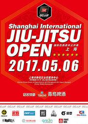 """2017""""青岛啤酒""""GCJJF国际巴西柔术公开赛(上海)"""