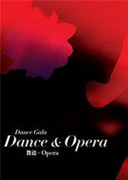 舞蹈《舞动•Opera》