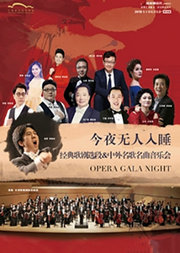 今夜无人入睡-经典歌剧选段&中外名歌名曲音乐会