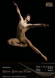 芭蕾明星炫舞之夜 罗伯托·波雷与朋友们