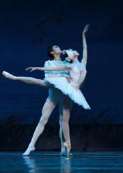 2019新年演出季 绝美经典芭蕾舞剧《天鹅湖》 广州芭蕾舞团