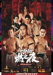 《东方有摔角》—OWE国际功夫摔角格斗秀