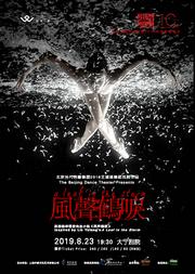 北京当代芭蕾舞团2018王媛媛舞蹈戏剧作品《风声鹤唳》