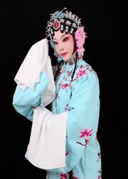 长安大戏院1月12日 庐剧《清风亭》