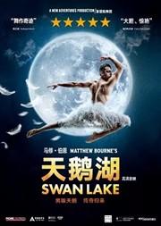 【苏州】新现场·高清放映:马修·伯恩芭蕾舞剧《天鹅湖》