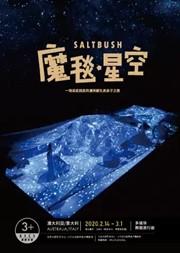 【北京】澳大利亚.意大利 多媒体舞蹈旅行剧《魔毯·星空》